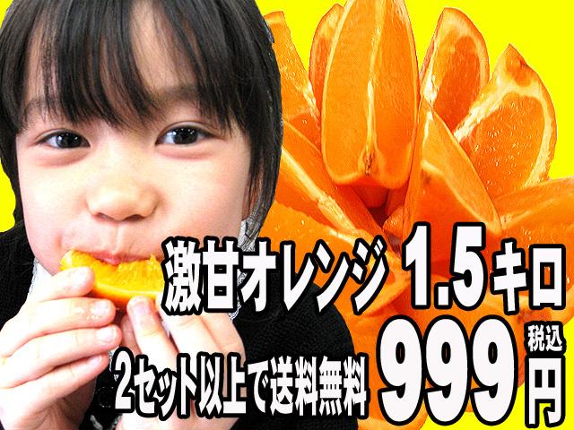 激甘オレンジたっぷり1.5キロ999円